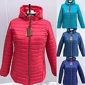 Женские куртки  размеры от 54-70
