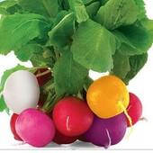 Редис пасхальные яйца