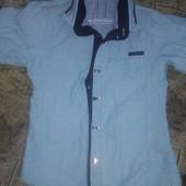 Тениска или рубашка,один товар на выбор победителя.