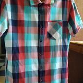 Tom Taylor летняя рубашка,состоянии новой,смотрим замеры