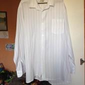 Белая рубашка в тонкую полоску Golden elephant, р.ххл (ворот 44-45)
