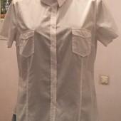 3 Белые женские рубашки с коротким рукавом