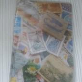 Яркий чехол на паспорт:картинка Марки+прозрачная обложка.