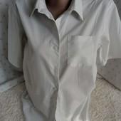 две белые рубашки одним лотом на 14-15 лет