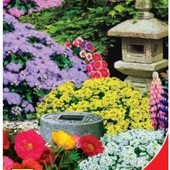 Семена Цветочной смеси Японский садик (0.5г) Карликовые и почвопокровные растения ярких цветов