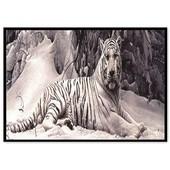 Алмазная вышивка Тигр. Частичная выкладка 50 на 31 см