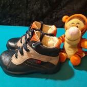 Полностью кожаные деми ботинки Elefanten, разм. 20 (13,5 см ст.) Сост. хорошее!