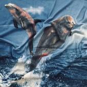 Флисовый плед / Дельфины /1,70~1.25