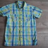 Рубашка Cool club 152 Сост.отл!