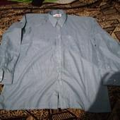 317. Рубашка
