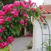 Садовая арка, для вьющихся растений