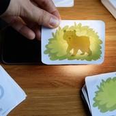 Игра с фонариком для детей 2-8 лет 30 карточек+фонарик