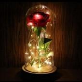Сувенир! Роза под куполом, светится!