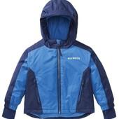 лыжная куртка на мальчика от lupilu