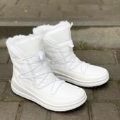 Супер! Белоснежные! В коробке. Шикарные зимние ботинки. Лёгкие,теплые,красивые.Украина! ..